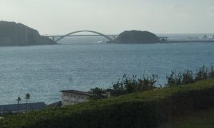 紀州梅真鯛1