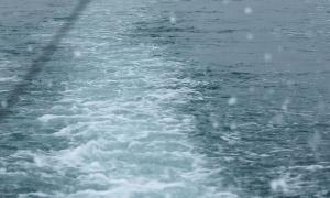 予想以上に雨も風も強まってきた・・・残念ながら予定を切り上げて帰港。